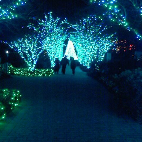 Photo taken at Atlanta Botanical Garden by Randy on 1/5/2012