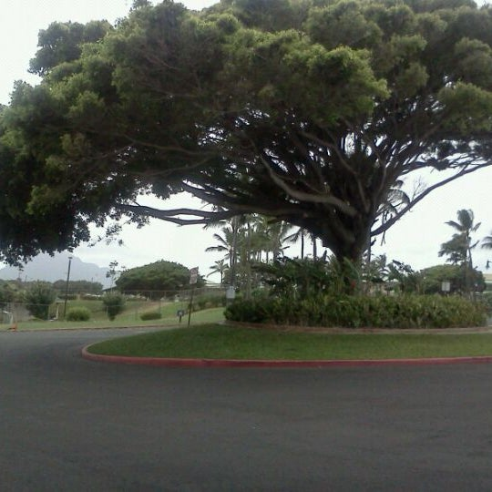 Avis Car Rental Lihue Kauai Airport