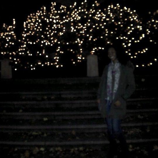 Photo taken at Grand Army Plaza by Jason K. on 11/20/2011
