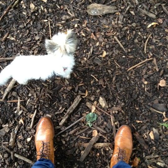 Photo taken at Marcus Garvey Park - Dog Run by Foladé on 8/1/2012