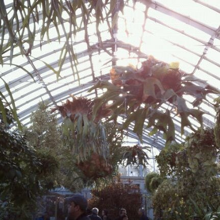 Photo taken at Enid A. Haupt Conservatory by Thomas Z. on 2/20/2011
