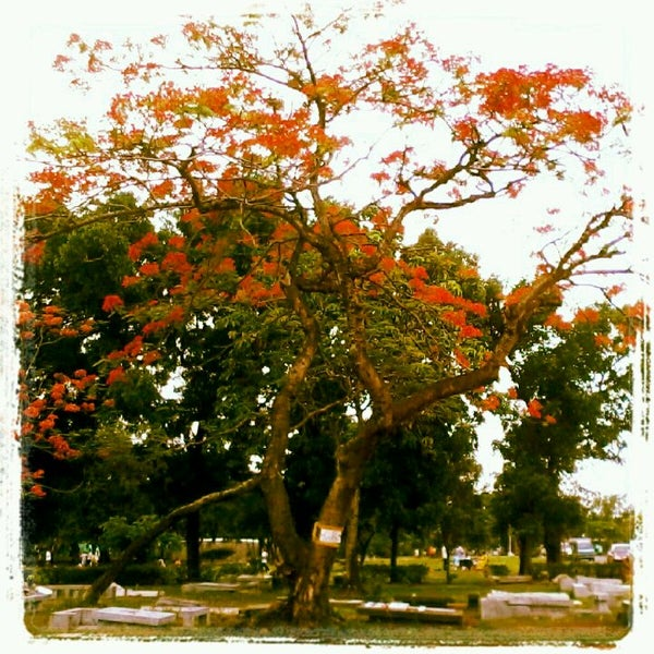 Photo taken at Manila Memorial Park by Jannel Paula A. on 5/27/2012