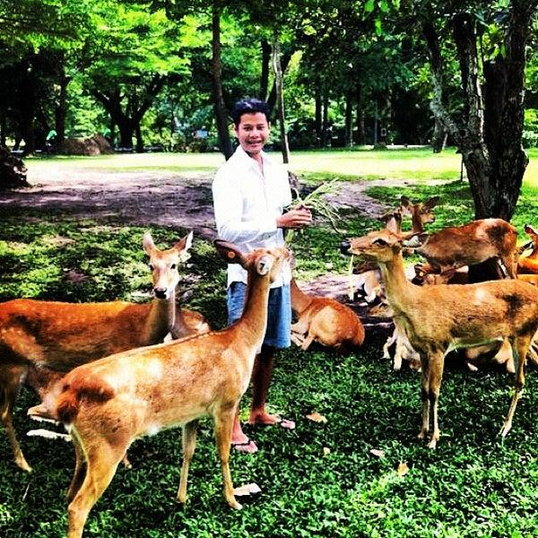 Photo taken at Khao Kheow Open Zoo by Kreetha S. on 8/19/2012