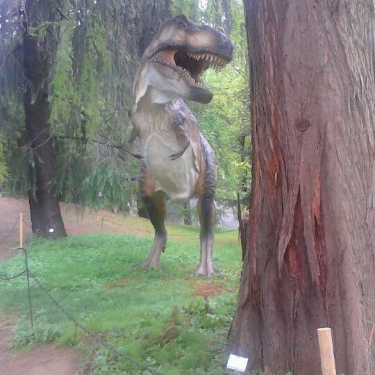 Photo taken at Museo di Storia Naturale, Orto Botanico by Oliver D. on 4/29/2012