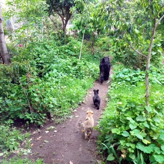 Photo taken at Parque Ecologico Huayamilpas by Mari F. on 8/22/2012
