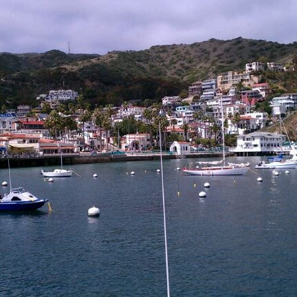 Photo taken at Santa Catalina Island by Louise F. on 3/23/2012