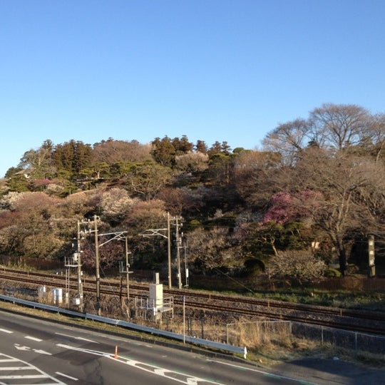 Photo taken at 偕楽橋 by yoichi on 3/26/2012