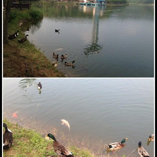 Photo taken at Yuldong Park by Shuudii C. on 7/1/2012