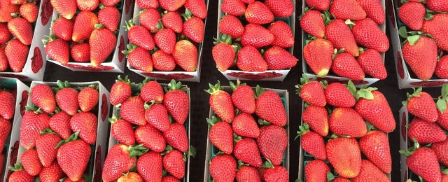 Photo taken at Montclair Farmers Market by Vera M. on 3/22/2015