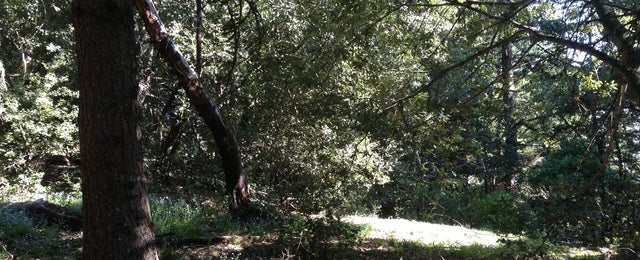 Photo taken at El Corte De Madera Creek by Isabelle S. on 4/27/2013