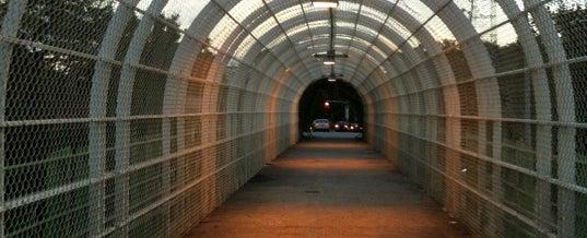 Photo taken at Prospect Avenue Bridge by Abhilasha S. on 7/22/2012