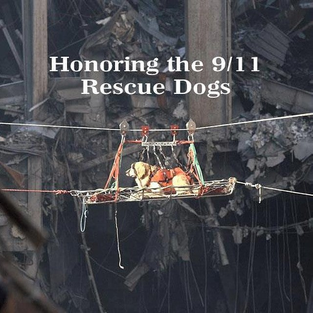 the importance of 9 11