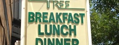 Nookies Tree Restaurant is one of Chicago List.