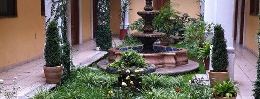 Hotel Dainzu is one of Hoteles en Oaxaca.