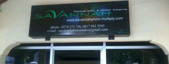 savannah studio