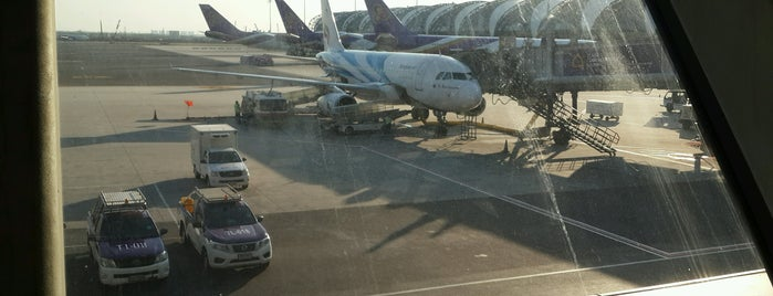 Gate B2 is one of TH-Airport-BKK-1.