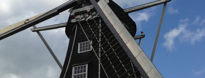 Meenkmolen is one of Dutch Mills - North 1/2.