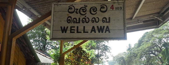 Wellawa Railway Station is one of Railway Stations In Sri Lanka.