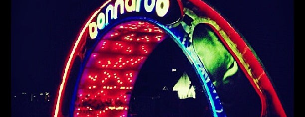 Bonnaroo Music & Arts Festival is one of Great music venues.