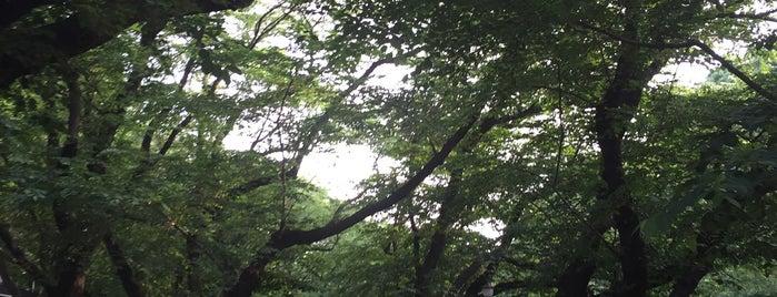 JR 上野駅 公園口前喫煙所 is one of 喫煙所.