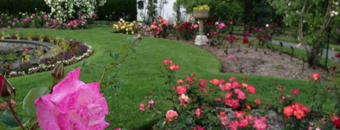 James P. Kelleher Rose Garden is one of USA East Coast.