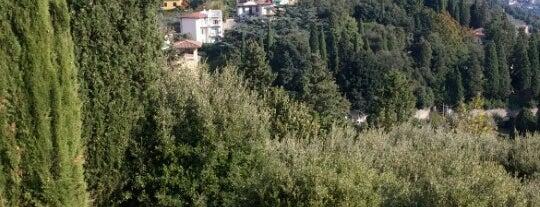 Fiesole is one of Firenze (Florence).