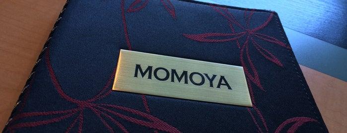 Momoya is one of Aurora illinous.