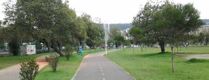 Parque La Carolina is one of HOY | Turismo.