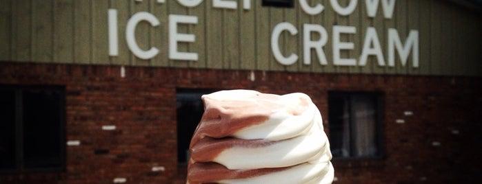 Holy Cow Ice Cream is one of Rachel's Tips.