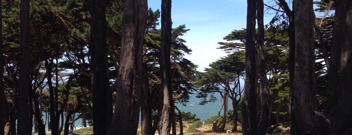 Fort Miley is one of Must-Visit Great Outdoors in San Francisco.