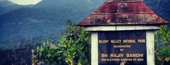 Silent Valley National Park is one of Best places in Palakkad, India.