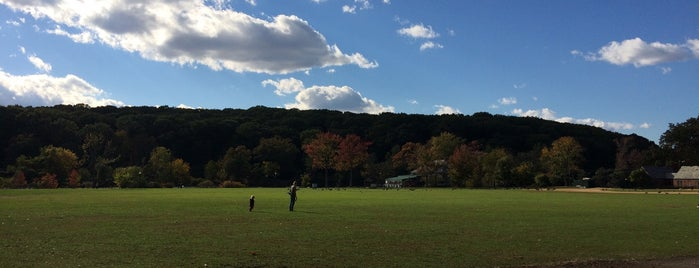 Clove Lakes Park is one of The Most Romantic Locations in NYC Parks.