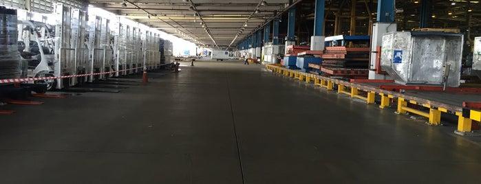 Thai Airways (TG) - Cargo is one of TH-Airport-BKK-1.