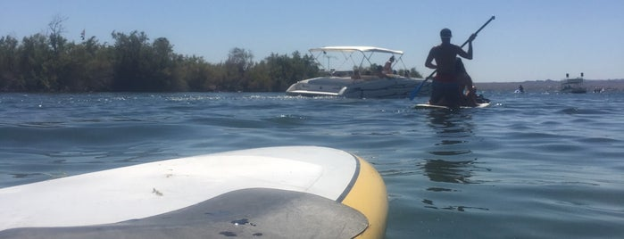 Whett Rods is one of Top 10 favorites places in Lake Havasu City, AZ.