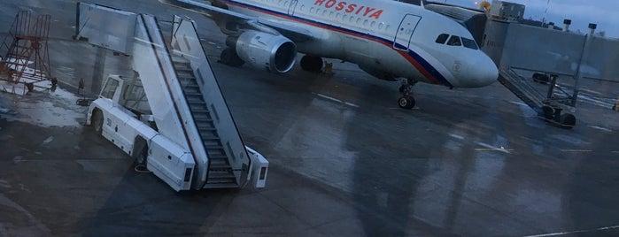 Pulkovo International Airport (LED) is one of Санкт-Петербург.