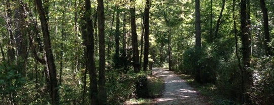 Al Buehler Cross Country Trail is one of Must-visit Great Outdoors in Durham.