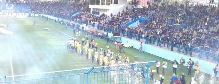 Динамо is one of Stadiums.