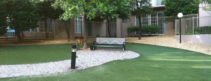 Windsor Dog Park is one of DFW Parks.