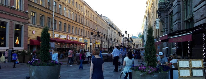Малая Садовая улица is one of Санкт-Петербург.