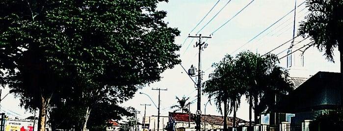 Avenida Teixeira de Barros (Rua Larga) is one of em São Carlos.