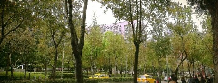 林森公園 Linsen Park is one of My Taiwan.