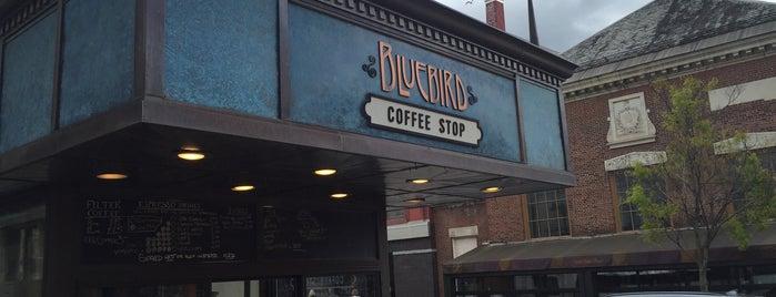 Bluebird Coffee Stop is one of Burlington's Best Food & Drink.