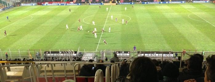 Stade Municipal du Ray is one of Stades de Ligue 1.