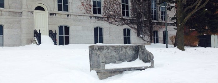 The Kissing Bench is one of NYC Syracuse UNI.