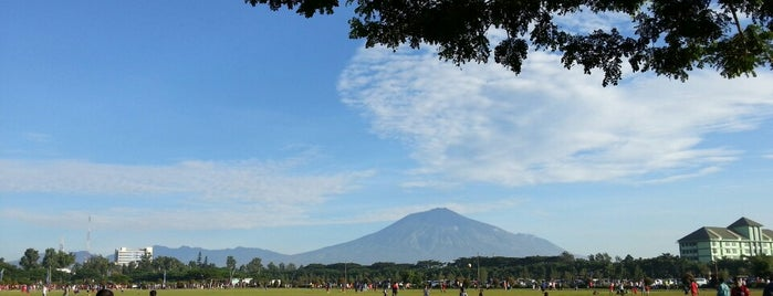 Lapangan Rampal is one of All-time favorites in Indonesia.