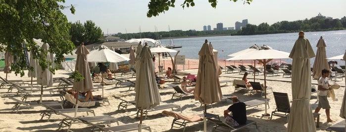 Royal Beach Club is one of Места.