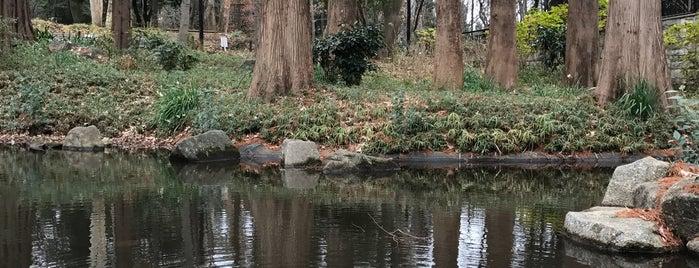 ジャブジャブ池 is one of 公園.