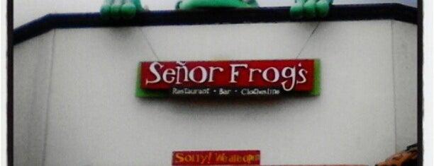 Señor Frog's is one of Antros Vallarta.