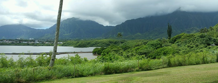 He'eia State Park is one of Cats in Hawai'i.
