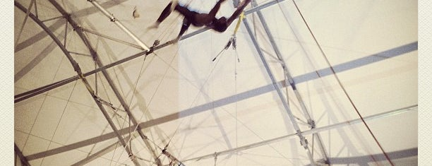 Trapeze School of New York is one of Dance.